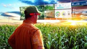 google_glass_agricoltura520